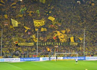 Borussia Dortmund - einer der mitgliederstärksten Fußballvereine der Welt